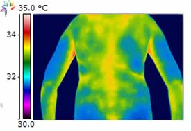Thermography Image Thoracic Cooling